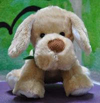 Blarney, stuffed dog, available for purchase in support of the RONALD MCDONALD HOUSE CHARITIES ADOPT A BLARNEY FUNDRAISER